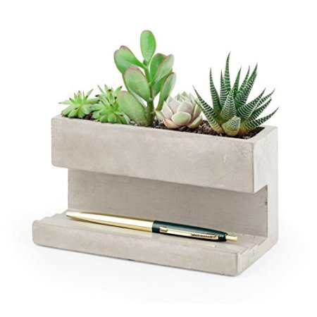 Desktop Concrete Planter